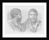 William Lanney, the last Tasmanian by English School