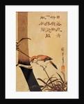 Bird and bamboo by Ando or Utagawa Hiroshige