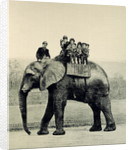 A Farewell Ride on Jumbo by English School