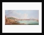 Bay of Naples by Pietro Fabris