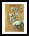 Hydrangeas by Paul Cesar Helleu