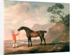 Scapeflood by George Stubbs