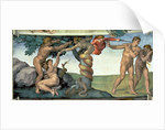 Sistine Chapel Ceiling: The Fall of Man by Michelangelo Buonarroti