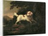 Study of Clumber Spaniel in Wooded River Landscape by Edward Cooper