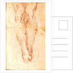 Study for a Crucifixion by Michelangelo Buonarroti
