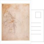 Study of Drapery by Michelangelo Buonarroti