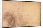 Study of an angel by Michelangelo Buonarroti