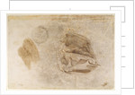 Study for the robes of the Erythraean Sibyl by Michelangelo Buonarroti