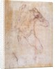 Study of a male nude (recto) by Michelangelo Buonarroti