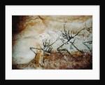 Frieze of deer, c.17000 BC by Prehistoric