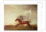 Bay Malton with John Singleton Up by George Stubbs