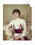 Portrait of a Countess by Albert Lynch