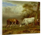 Two Bulls with Locked Horns by Paulus Potter