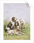 A Group of French Hounds by Charles Oliver de Penne