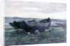 In Connemara by Joseph Richard Bagshaw