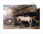 Mares and Foals by William Barraud