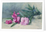 Oleander Blossom by Mary E. Butler