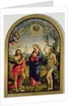 The Virgin with Saints Sebastian and John the Baptist by Timoteo Viti