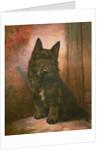 Scottie Puppy by Lilian Cheviot