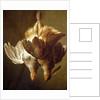 Still Life of Two Partridges by Matthew Bloem