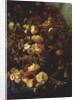 Still Life of Flowers on a Ledge with Birds Nest by Pierre-Louis de Coninck