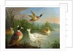 Ducks on a River Landscape by Marmaduke Craddock