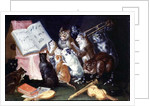 A Musical Gathering of Cats by Ferdinand van Kessel