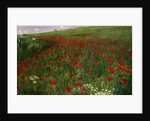 The Poppy Field by Pal Szinyei Merse