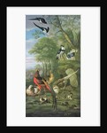 Cock pheasant, hen pheasant and chicks and other birds in a classical landscape by Pieter Casteels