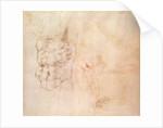 Torso Study by Michelangelo Buonarroti
