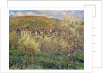 Plum Trees in Blossom by Claude Monet