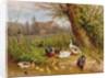 Mallard Ducks with their Ducklings by Carl Jutz