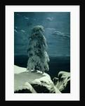In the Wild North by Ivan Ivanovich Shishkin