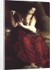 The Penitent Magdalen by Spanish School