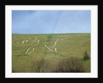 The Cerne Abbas Giant by Unknown