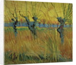 Pollarded Willows and Setting Sun by Vincent van Gogh