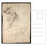 Male figure study by Michelangelo Buonarroti