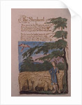 The Shepherd by William Blake