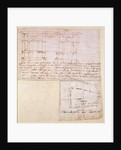 Architectural sketch with notes by Michelangelo Buonarroti