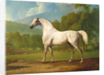 Mambrino by George Stubbs