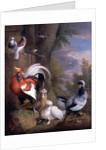 Exotic Birds in a Landscape by Jakob Bogdani or Bogdany
