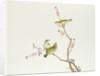 White-Eye bird, Ch'ien-lung period by Qing Dynasty Chinese School