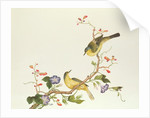 Yellow Wagtail with blue head, Ch'ien-lung period by Qing Dynasty Chinese School
