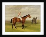 Isinglass, Winner of the 1893 Derby by Emil Adam