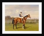 'Spearmint', Winner of the 1906 Derby, 1906 by Emil Adam