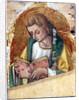 John the Evangelist, c.1500 by Vittorio Crivelli