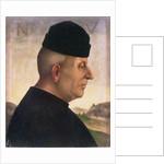 Portrait of Niccolo Vitelli by Luca Signorelli