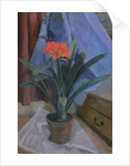 Clivia, 1917 by Roger Eliot Fry