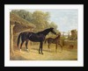 Levity, the property of J.C.Cockerill Esq., with her foal Queen Elizabeth, the property of Lord Dorchester, 1843 by John Frederick Herring Snr