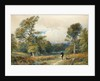 Rough Shooting in Windsor Great Park by William Collingwood Smith